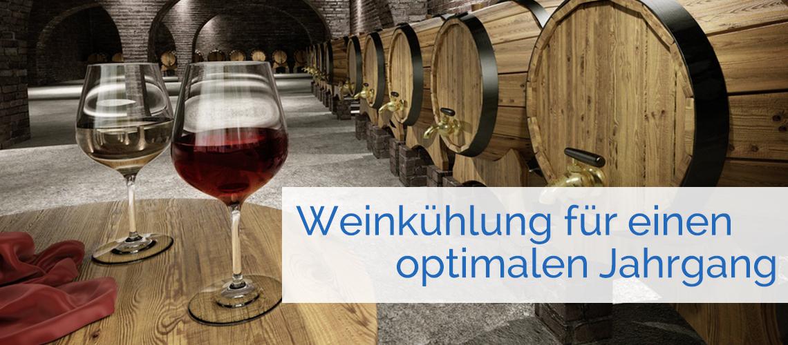 Weinkeller Weinfaesser Weinglaeser